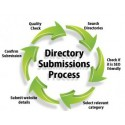 Directory Submission Service 1000