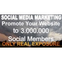 Promote your website to 3,000,000 social followers