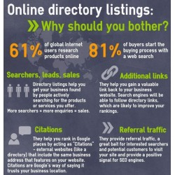 40 Approved Web Directory Listings + 100 Search Engines Inclusion